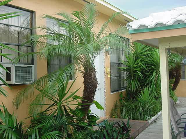 Angelfish Inn Hollywood Florida
