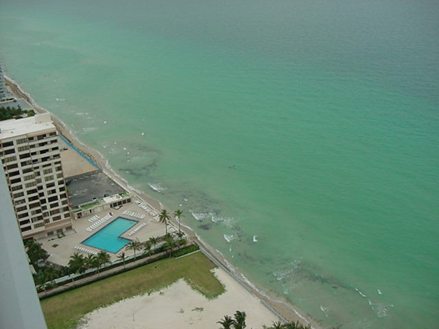 Hollywood Florida